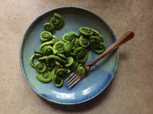 Steamed fiddleheads with fork on blue stoneware plate